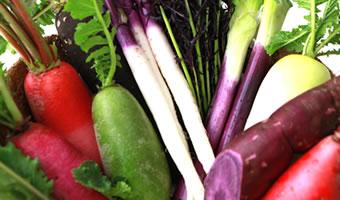 オートクチュール野菜
